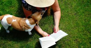 Off The Shelf's Feel-Good Novels List